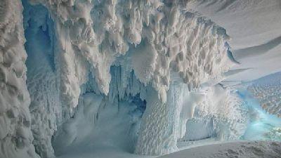 В Антарктиде ученые обнаружили сенсационную находку