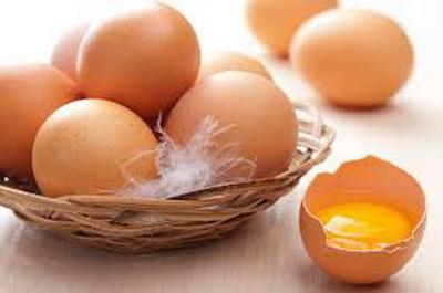 Ученые рассказали всю правду о куриных яйцах