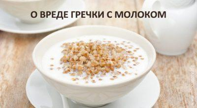 Почему гречку нельзя есть с молоком
