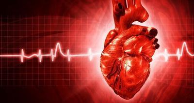 """Картинки по запросу """"11-симптомов-указывающих на-серьезные-проблемы-с-сердцем"""""""""""