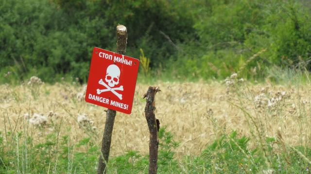 Отличительный знак хлебной нивы у линии фронта.