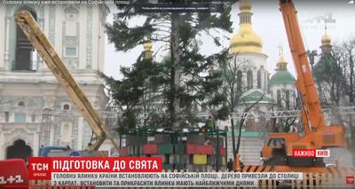 """В центре Киева установили почти """"лысую"""" главную елку Украины. ВИДЕО"""