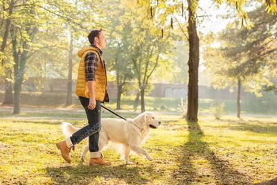 Пять фактов о пользе домашних животных