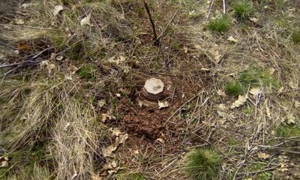 В зоне АТО из-за подрыва на взрывном устройстве погиб украинский военный
