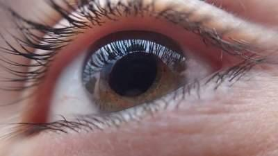 Google предсказывает болезни сердца по сетчатке глаза