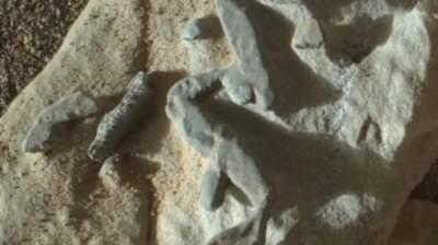 Известный ученый из НАСА нашел доказательства жизни на Марсе