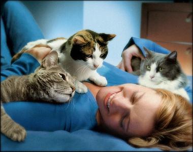 Почему кошки «мнут» человека лапками перед сном?