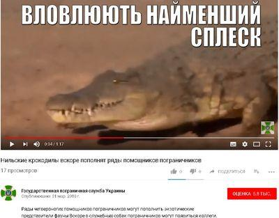 Погранслужбу Украины пополнят крокодилы (ВИДЕО)