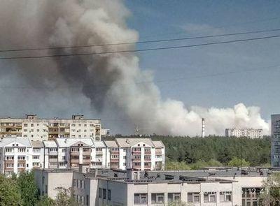 Донбасс в огне: страшный пожар пожирает лес, опубликованы фото