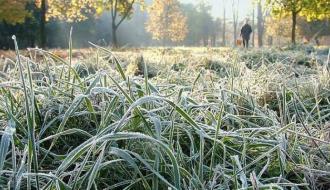 В четырех областях Украины ожидаются заморозки