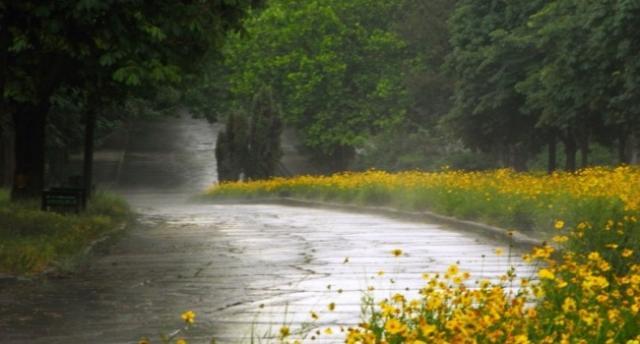 Синоптик: «5 июня похолодает, Украину накроет циклон»