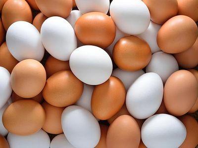 """В """"ЛНР"""" похвастали яйцами"""
