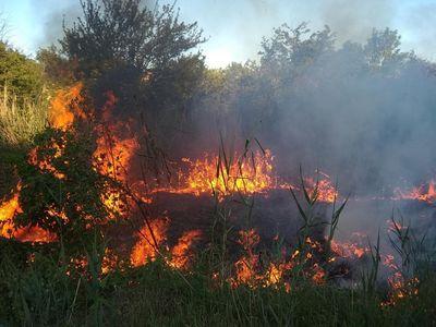 Огонь охватил три района Донетчины