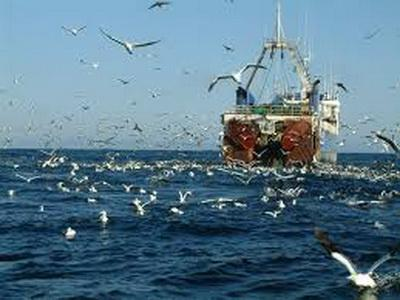 Россия захватила украинские рыболовецкие ресурсы в Черном море