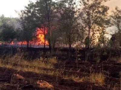 Донбасс в огне: пожары пожирают регион