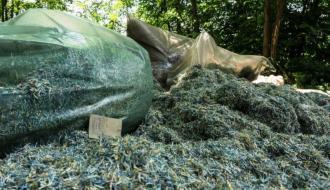 На Днепропетровщине в лесопосадке обнаружены миллионы гривен