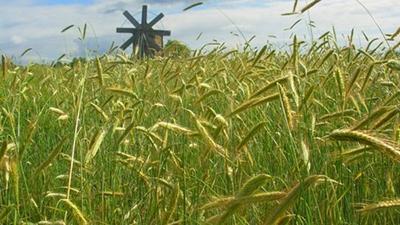 Украинцы смогут обменивать земельные участки