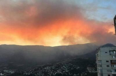 В Крыму 2-й день бушует мощный лесной пожар: оккупант не в состоянии спасти заповедник под Ялтой. ВИДЕО