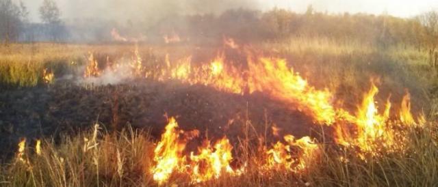 Люди  в Луганской области задыхаются от жуткой вони, уже третьи сутки пылает пожар на химзаводе