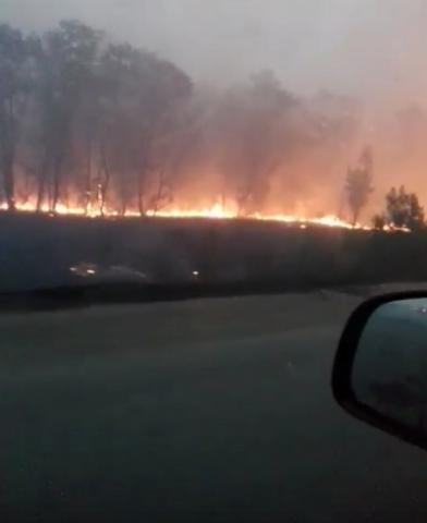 Дорога в ад: Почему в «ЛНР» не тушат лесной пожар