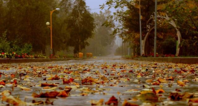 Очень холодно и сильные дожди: синоптики обновили прогноз
