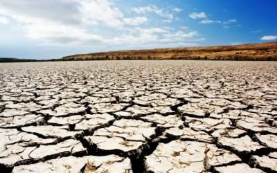 В следующем году Землю ожидает засуха, - ученые