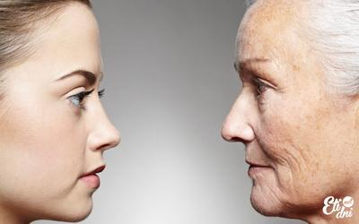 Стало известно, какие популярные продукты могут ускорить старение