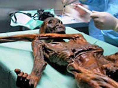 Мумия Эци - одна из крупнейших находок археологов последних лет.