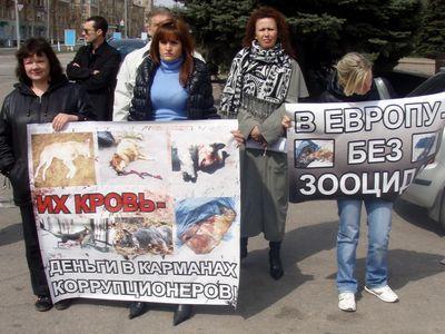 """""""ЕВРО"""" на крови: на акции  в защиту животных публично казнили собаку"""