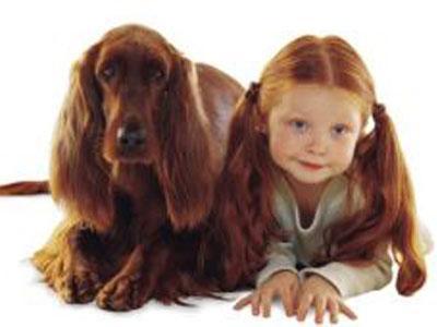 Собака – доброе и общительное существо, и очень быстро завоевывает любовь детей.