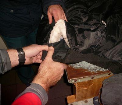 На границе с Россией задержали крупную партию наркотиков