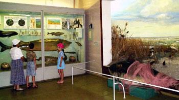 Мариупольский краеведческий музей