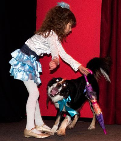 Выставка-продажа Счастливые хвосты, прошедшая в субботу в донецком центре КиноКульт, собрала 10 тысяч гривен.