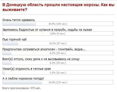 Опрос. В Донецкую область пришли настоящие морозы. Как вы выживаете?